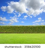 green bush on sky background. | Shutterstock . vector #358620500