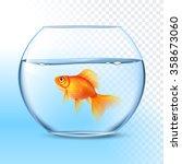 Single Goldfish Swimming In...