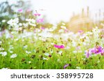 beautiful spring field with... | Shutterstock . vector #358995728