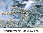 pine tree covered with hoar... | Shutterstock . vector #359067128
