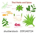 thai herbs and spices aromatic... | Shutterstock .eps vector #359140724