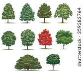 realistic trees pack. isolated... | Shutterstock .eps vector #359283764