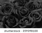 Black Roses Flower Background...