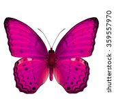 Small photo of Beautiful pink butterfly, the Common Yeoman Butterfly (Cirrochroa tyche) upper wing part in fancy color profile isolated on white background
