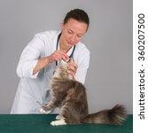 Female Veterinarian Giving A...