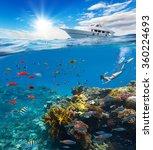 female freediver floating at... | Shutterstock . vector #360224693
