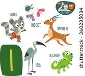 cute zoo alphabet in vector.i... | Shutterstock .eps vector #360235034