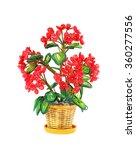 beads flower isolated over white | Shutterstock . vector #360277556