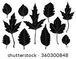 leaves silhouette vector set