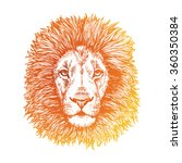 Lion Hand Drawn Illustration