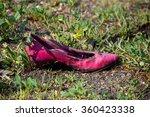Lost Pink Women's Shoe In Park
