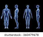 x ray human male female body.... | Shutterstock . vector #360479678