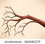 bare tree branch | Shutterstock .eps vector #360482279