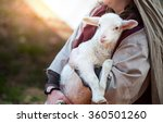The Shepherd Holds The Lamb In...