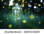 fireflies in a jar. long... | Shutterstock . vector #360514604