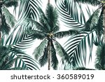 tropical palm leaves  trees... | Shutterstock .eps vector #360589019
