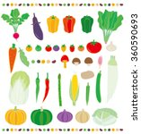 vegetable | Shutterstock .eps vector #360590693