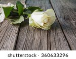 Stock photo white rose on wood rustic background 360633296