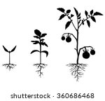 vector illustrations of set of... | Shutterstock .eps vector #360686468