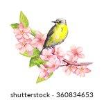 Spring Bird On Blossom Branch...