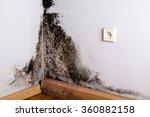 Black Mold In The Corner Of...