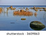 a great number of stones in the ... | Shutterstock . vector #3609863