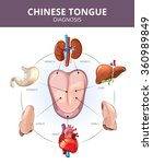 chinese tongue diagnosis.... | Shutterstock .eps vector #360989849