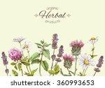 vector vintage banner with wild ... | Shutterstock .eps vector #360993653