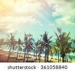Coconut Trees And Beach Wooden...