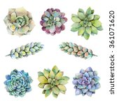 Watercolor Set With Succulents...