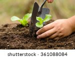 close up farmer hand planting...   Shutterstock . vector #361088084