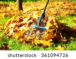 raking fall leaves with rake | Shutterstock . vector #361094726