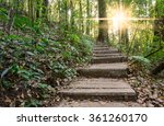 forest stairs and light sunrise. | Shutterstock . vector #361260170