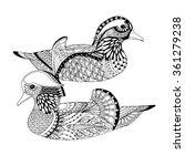 Two Mandarin Ducks Swimming In...