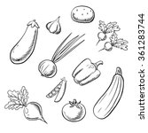 farm sketched vegetables with... | Shutterstock .eps vector #361283744