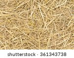 Yellow Dry Straw As Background
