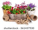 spring flowers in wooden bucket ... | Shutterstock . vector #361437530