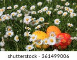 Painted Easter Eggs Hidden In...