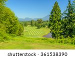 golf course with gorgeous green. | Shutterstock . vector #361538390
