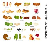 collection of different nuts... | Shutterstock .eps vector #361580513