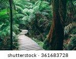 Winding Boardwalk In Australia...