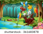 wild animals in the forest... | Shutterstock .eps vector #361683878