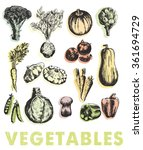 vegetables vector hand drawn | Shutterstock .eps vector #361694729