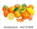 several fresh whole mandarins ... | Shutterstock . vector #361727849