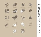 spices set  vector illustration ...