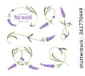 set of lavender flowers elements | Shutterstock .eps vector #361770449