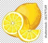 fresh lemon vector isolated on... | Shutterstock .eps vector #361797149