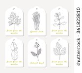 tags collection with hand drawn ... | Shutterstock .eps vector #361823810