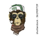 hipster monkey print for t... | Shutterstock .eps vector #361909739