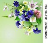 forest spring flowers  elegant... | Shutterstock .eps vector #361983503